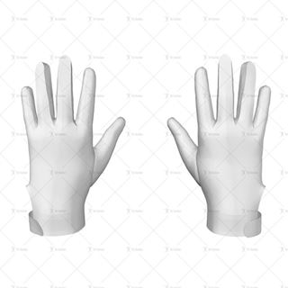 Picture for category 3D Gloves
